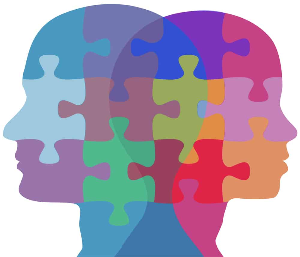 The puzzle of the brain concept